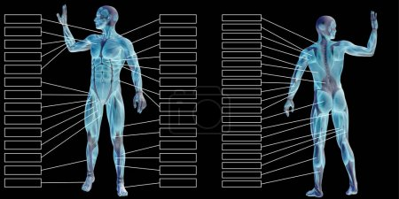 Concept or conceptual 3D human man anatomy and mus...