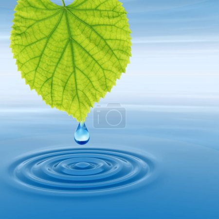 clean spring water or dew drop