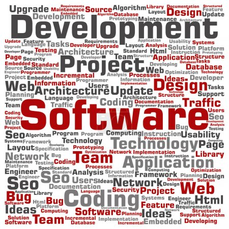 software development project