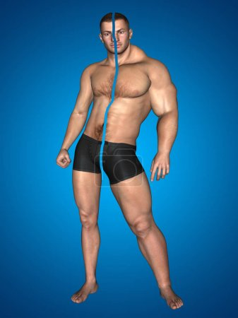 young male man bodybuilder