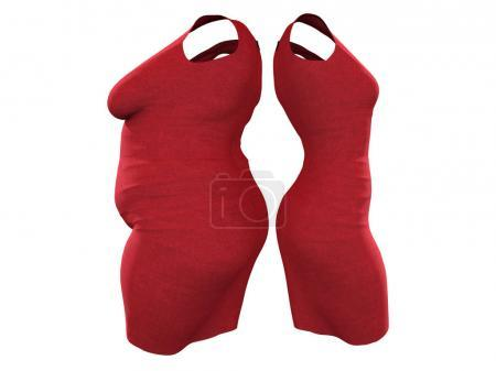 Conceptual overweight female dress outfit vs slim fit healthy body after weight loss