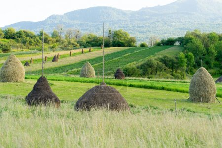The Beautiful Maramures County of Romania