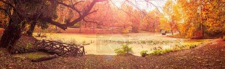 Photo for Lipnik (Teketo) park, Nikolovo village area, Ruse district, Bulgaria - Royalty Free Image