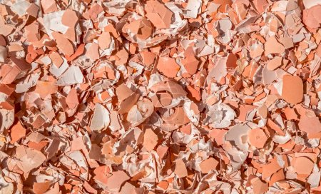 Image of crushed egg shells Abstract texture background