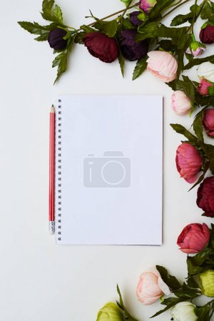 Notebook surrounded by the peonies