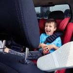 Постер, плакат: Happy child in the car