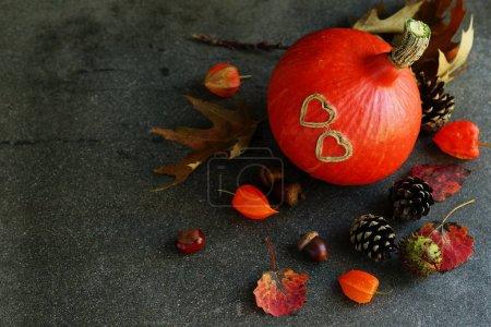 autumn nature harvest decoration
