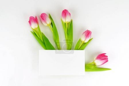 Photo for Bouquet of beautiful pink tulips on a white background and card for text. .top view. Copy space. Holiday background - Royalty Free Image