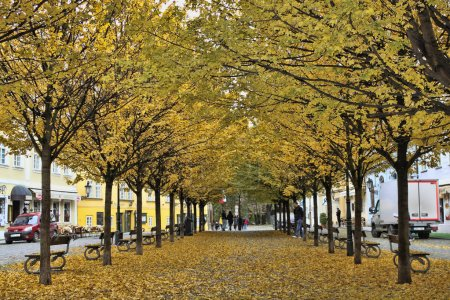 Autumn alleys in small squares of Prague