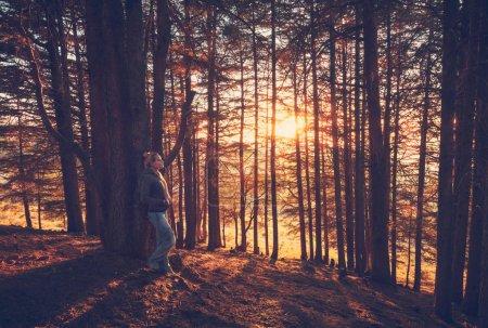 Photo pour Femme marchant dans la forêt d'automne, jolie fille passant la matinée dans le parc, profitant de la lumière du soleil jaune doux perçant les troncs d'arbres, automne serein weeken - image libre de droit