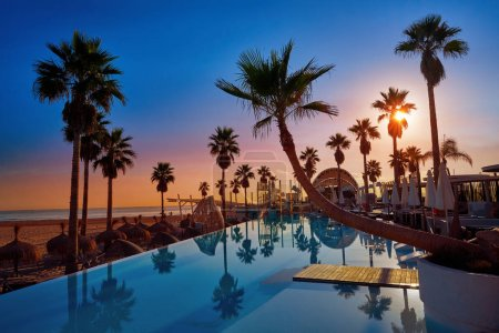 Resort pool in a beach with palm trees sunrise