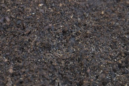Fertile dirt soil texture ready for farming close up.