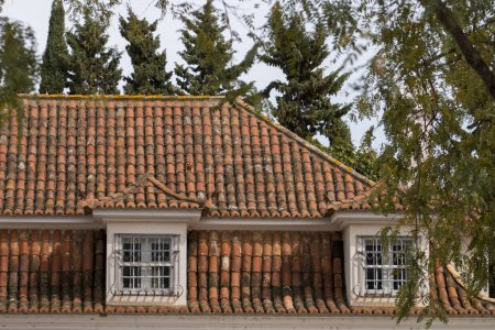 View of a typical Portuguese red tile roof.