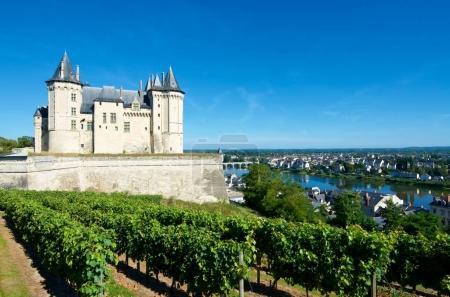 Saumur castle view
