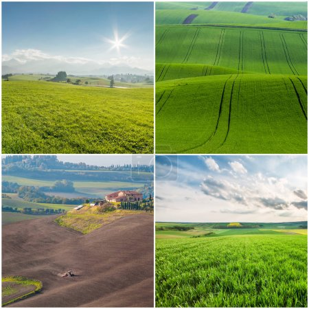 Different Agricultural Landscapes