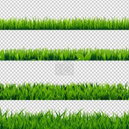 Set of Green Grass Borders