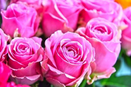 Photo pour Roses dans la boutique de fleurs. Fleurs coupées au stand de la rue - image libre de droit