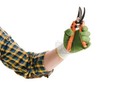 gardener holding secateurs in hand