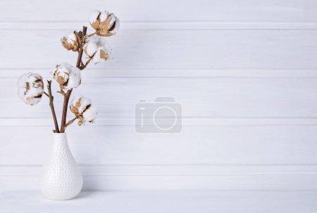Vase mit cotton flowers