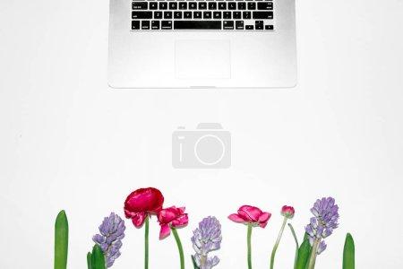 Photo pour Ordinateur portable et composition des fleurs sur fond blanc. Couché à plat, vue de dessus, espace de copie, maquette. Espace de travail féminin - image libre de droit