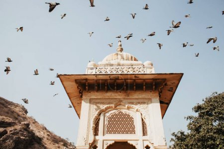 Jama Masjid in Delhi and birds flying on blue sky background