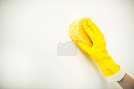 Photo pour Close-up partial view of hand in rubber glove cleaning wall with sponge isolated on white - image libre de droit