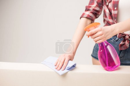 Photo pour Midsection view of woman holding spray bottle and rag cleaning surface  isolated on grey - image libre de droit