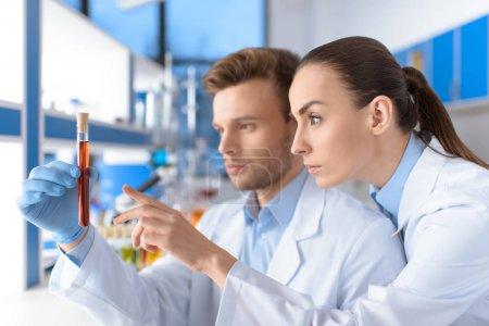 scientists holding laboratory tube