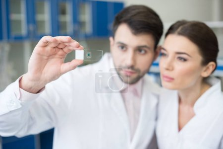 Scientists analyzing microscope slide