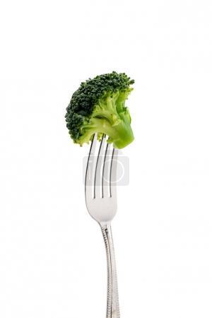 fresh broccoli on fork