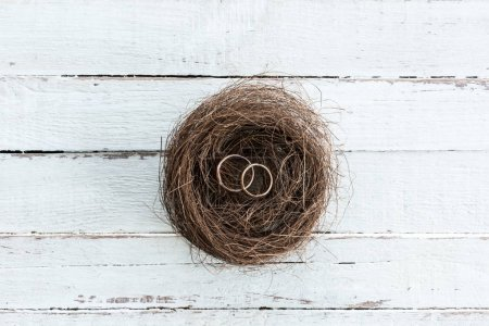 Wedding rings on nest