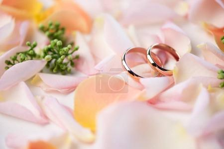 Photo for Close-up view of beautiful wedding composition with golden rings and rose petals, wedding rings and flowers - Royalty Free Image