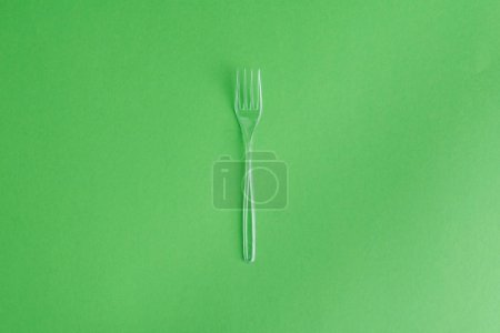 disposable plastic fork