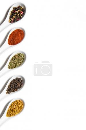 Photo for Top view of assorted aromatic seasonings in ceramic spoons isolated on white - Royalty Free Image