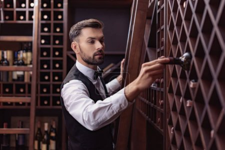 Photo for Portrait of young handsome sommelier choosing wine in cellar - Royalty Free Image
