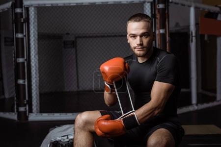 Photo pour Beau jeune homme athlétique portant des gants de boxe et regardant la caméra - image libre de droit