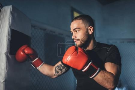 Photo pour Vue latérale du beau jeune sportif musclé, formation en gants de boxe - image libre de droit