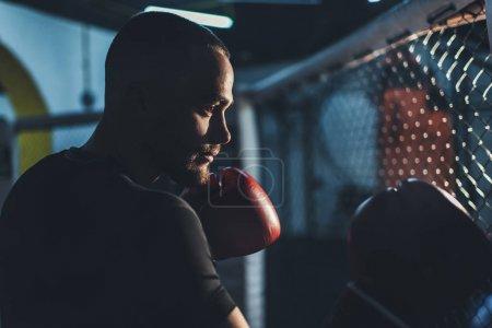 Photo pour Vue de côté de Close-up de beau sportif jeune en formation dans l'obscurité des gants de boxe - image libre de droit