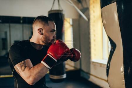Photo pour Vue de côté de musculaire jeune boxeur formation avec sac de boxe - image libre de droit