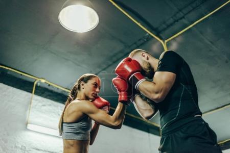 Photo pour Vue d'angle faible de jeunes boxeurs masculins et féminins de formation sur le ring de boxe - image libre de droit