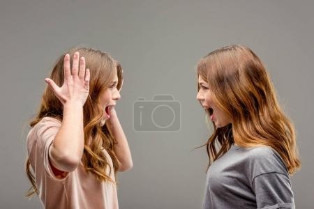 side view of twin sisters screaming at each other isolated on grey