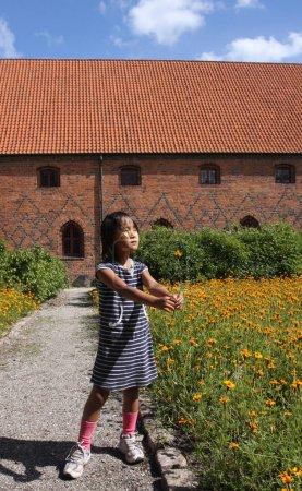 Vor Frue Monastery, a Carmelite monastery in Elsinore (Helsingor)