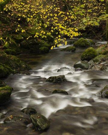 Photo pour Magnifique automne Paysage automnal de rivières et de chutes coulant dans le district des lacs - image libre de droit