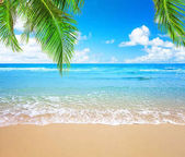 Coconut palm trees and blue sky and sea
