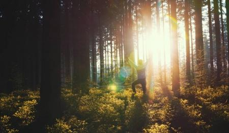 Joven en bosque silencioso con luz solar