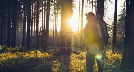 Young man in silent forest with sunlight