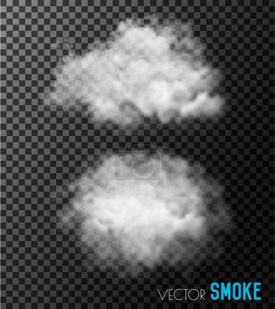 Transparent set of smoke vectors.