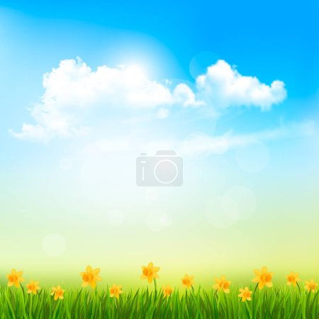Illustration for Spring Nature Background With A Green Grass And Blue Sky With Clouds. Vector. - Royalty Free Image