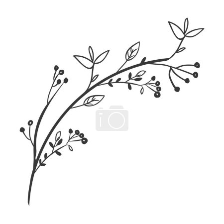 Illustration for Gray scale decorative branch with leaves vector illustration - Royalty Free Image