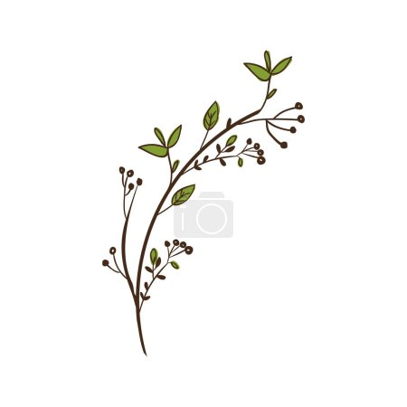 Illustration for Colorful decorative branch with leaves vector illustration - Royalty Free Image